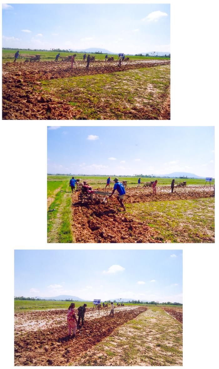 All/activity/ActiondeNorodomSihanouk/2012/Aot/id768/photo009.jpg