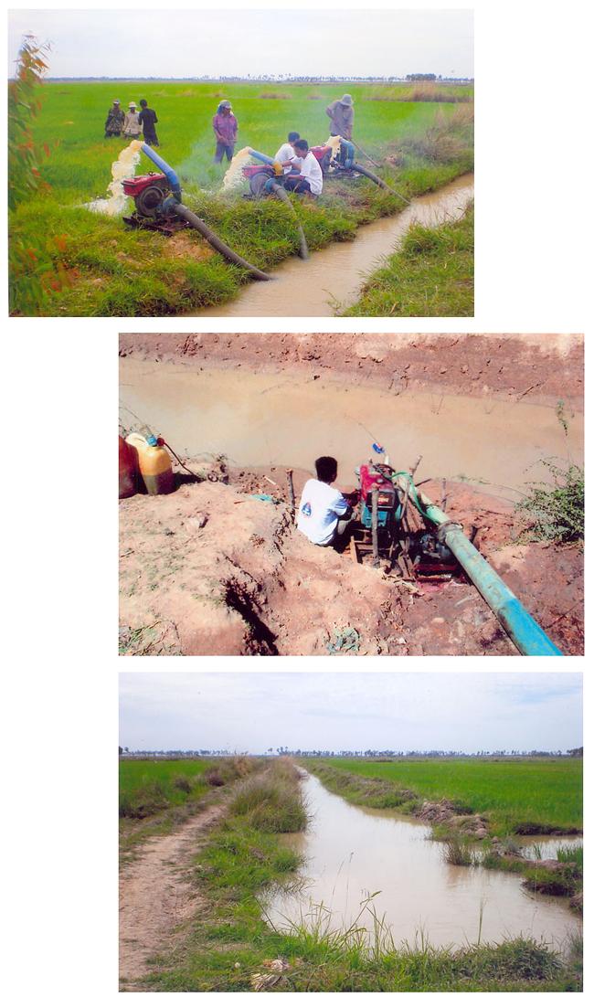 All/activity/ActiondeNorodomSihanouk/2012/Avril/id653/photo006.jpg